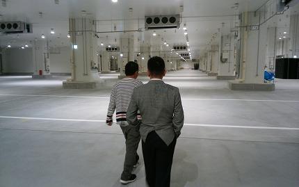豊洲新市場セリ場2
