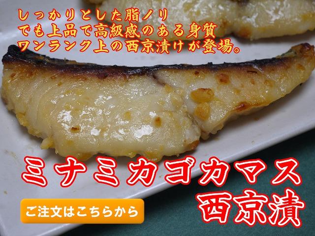 ミナミカゴカマス(銀さわら)西京漬