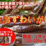 冷凍生ズワイガニ セクション(肩・足) Lサイズ