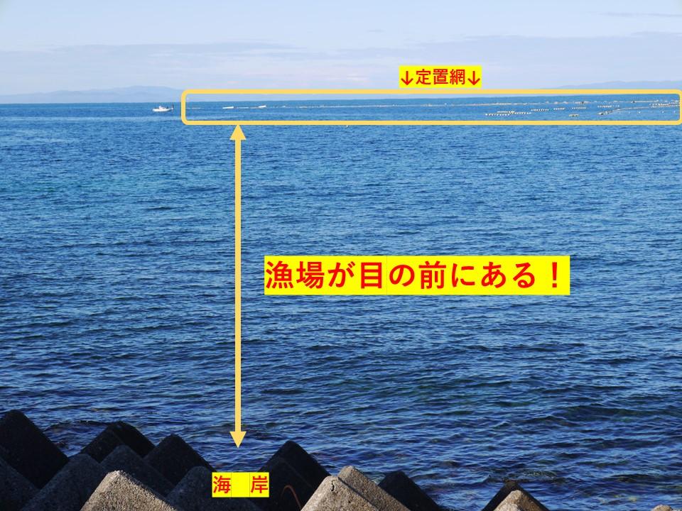 定置網が目の前にある富山湾の漁場