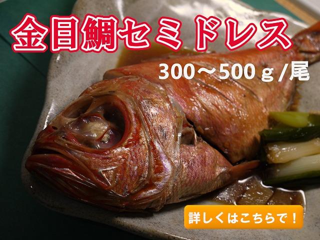 金目鯛セミドレス(御頭付き)300-500g