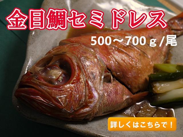 金目鯛セミドレス(尾頭付き)500-700g