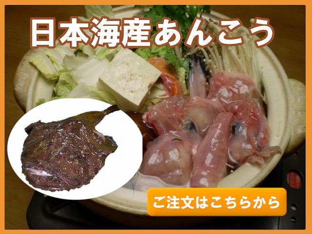 日本海産あんこう