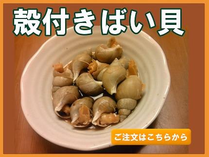 殻付きばい貝