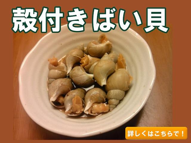 殻付きバイ貝
