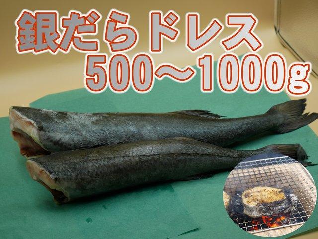 銀鱈(ギンダラ)ドレス