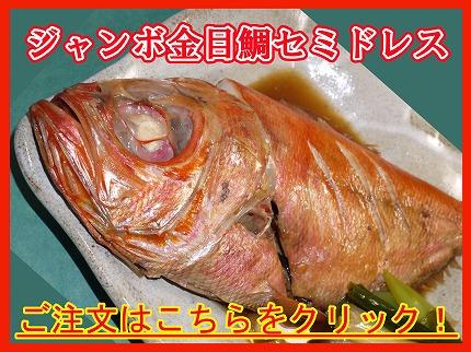 ジャンボ金目鯛セミドレス