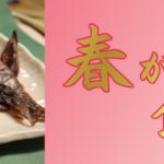 ホタルイカ、白えび、鰆(さわら)、金目鯛、甘鯛等々…。春の居酒屋メニュー作りはお任せください!貴店の人気メニューに花を添える春が旬の食材特集